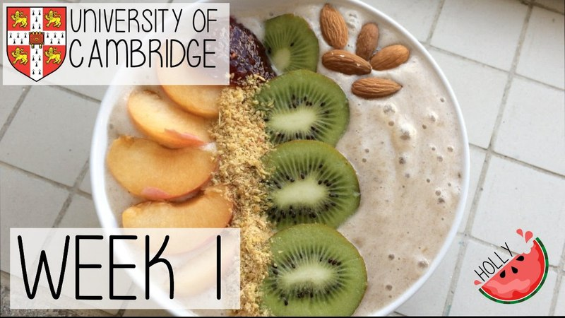WEEK 1 AT CAMBRIDGE UNIVERSITY | LECTURES, LABS SUPERVISIONS BEGIN