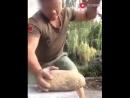 Китаец ломает камни голыми руками