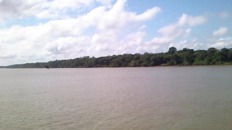 Река Амазонка 08