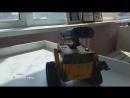 ВАЛЛ-И и ЕВА во Владимире: выставка роботов