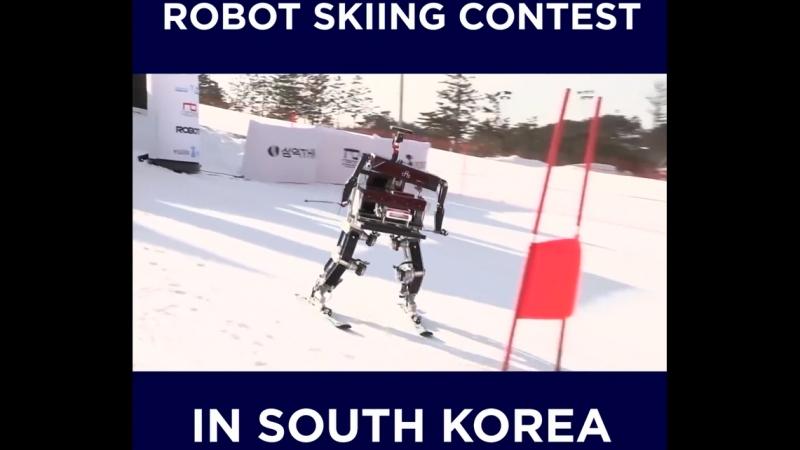 Роботы на Олимпиаде в Южной Корее