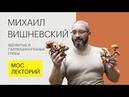 Ядовитые и галлюциногенные грибы Михаил Вишневский Лекция 2018