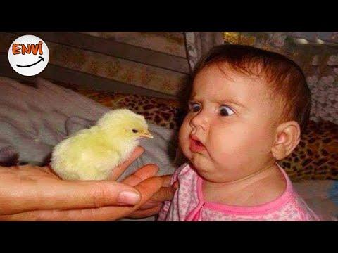 Mayıs Ayının En Komik Bebek Videoları 👶 Komik Bebekler 2018 envi