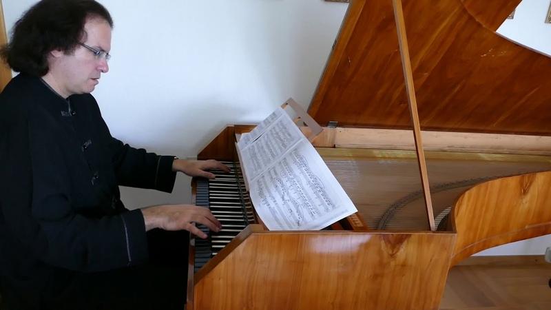 Michael Tsalka plays Beethoven's moonlight sonata on the Weimes Fortepiano from Radbon Collection