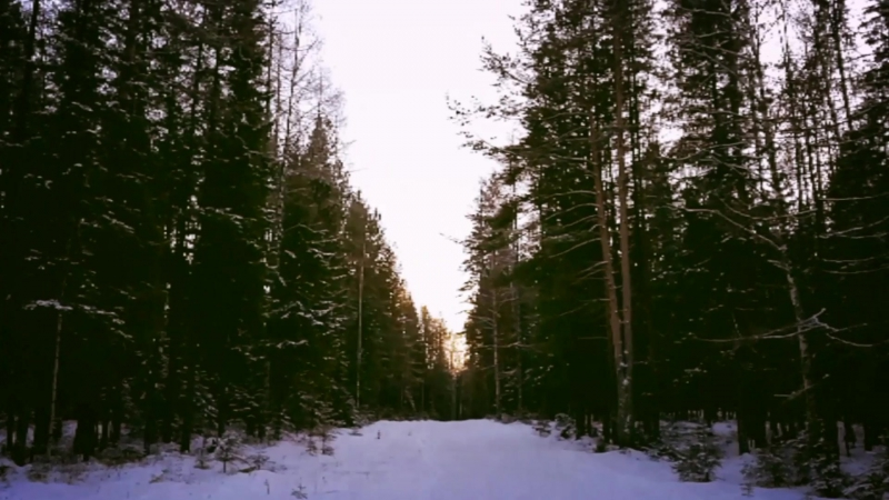 Постновогодняя прогулка