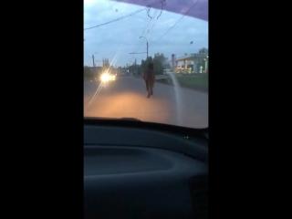 Кто потерял лошадку? Скачет по дороге на Западной. 21:35
