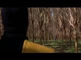 1995 - The Immortals - Mortal Kombat