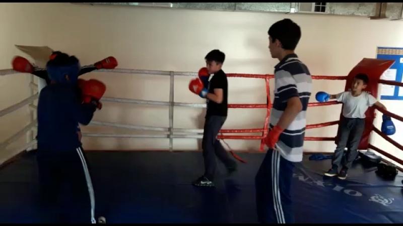 Бокс я сини