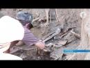 Археологические раскопки раскрывают новые исторические тайны недавнего прошлого