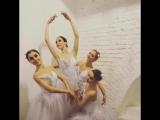 WEDDING - Шоу Балет RICH