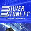 SilverStone F1™ Official