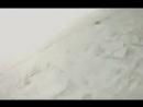 Vidmo org OKHOTA NA VOLKA 2012 436605 0