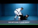 Alberto Serrano - DLR Shin to shin sit up sweep