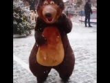 Медведь в самом центре Москвы!