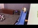 Приколы с кошками и котами 4 Подборка смешных и интересных видео с котиками и