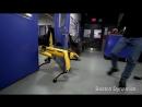 Издевательства над беззащитными роботами в Boston Dynamics