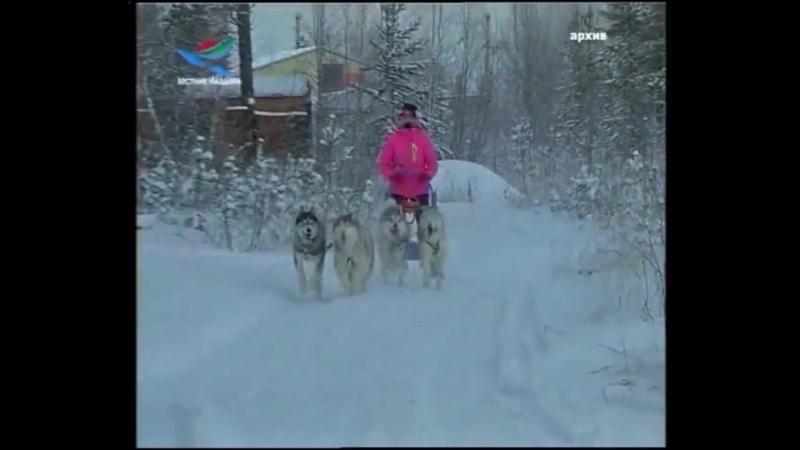 Дух Арктики_14.12.17