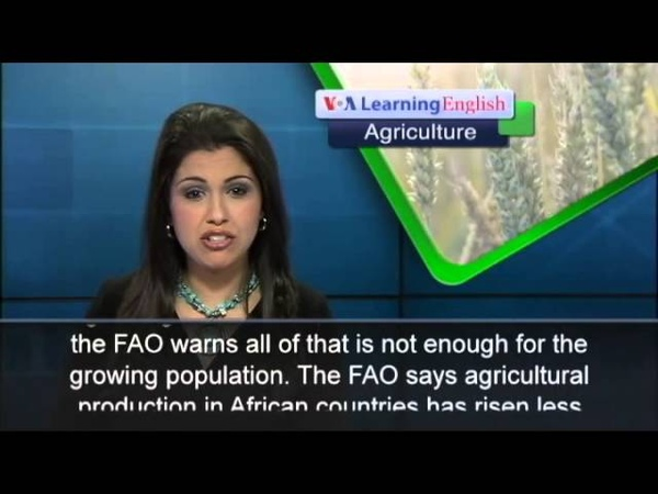 UN Officials describe Africa as Most Food-Insecure...