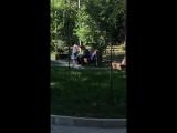 Видео с места нападения на Дениса Тена