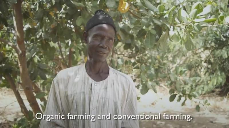 Лесосады - решение проблем голода и бедности..mp4