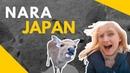 NARA - DEER TOWN, JAPAN vlog - pt.1