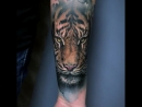 Идеи татуировок Sandra Daukshta (Inst: @sandradaukshtatattoo)