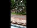 бездушные люди выкинули кубик Рубика за 300 рублей в окно!!