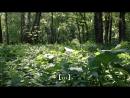 РАСТИТЕЛЬНЫЙ ВЕСТНИК ВЫПУСК 15 || PLANT REPORTER EPISODE 15 ENGLISH SUBTITLES