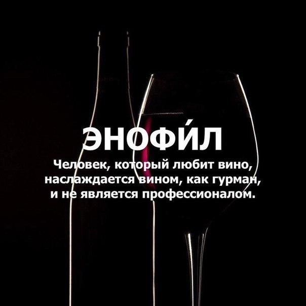 Что может быть лучше бокала вина по утру, днем или на ужин☺