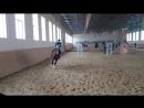 отрабатываем коректный ход лошади