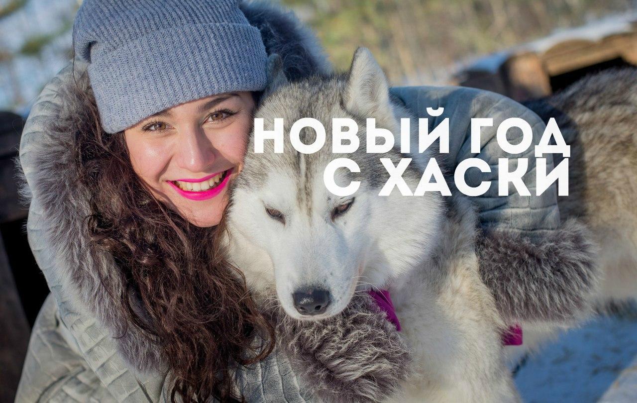 Афиша Саратов Новый год в питомнике хаски
