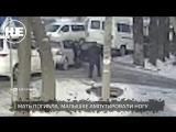 В Бишкеке маршрутка сбила мать с ребенком на переходе