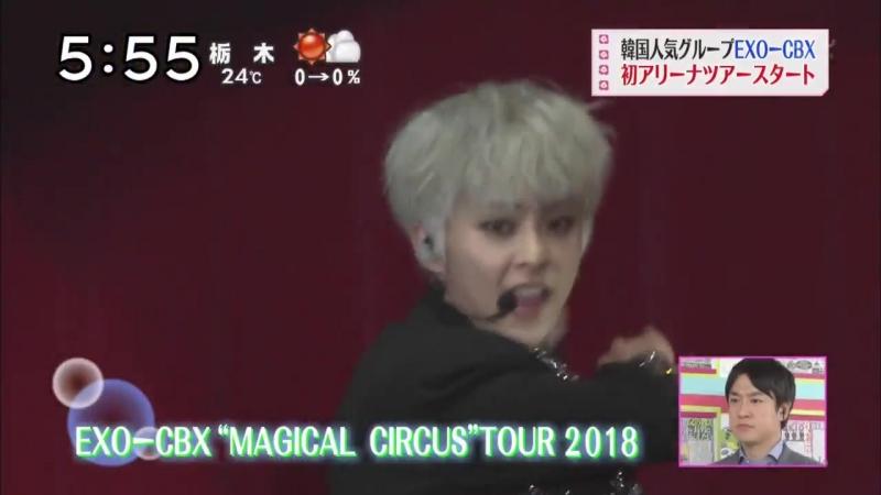 180512 Репортаж о Magical Circus Tour на утреннем шоу Mezamashi канала Fuji TV