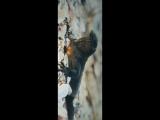 XXXTENTACION смешно комментирует видео с побегом ЯЩЕРИЦЫ от ЗМЕИ  [Рифмы и Панчи]
