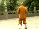 Shaolin small luohan kung fu.mp4