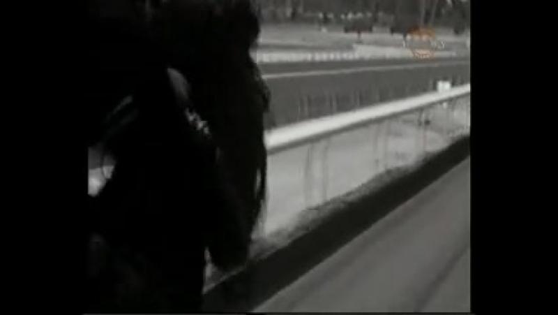 История великой лошади по кличке Сухарь (Seabiscuit)