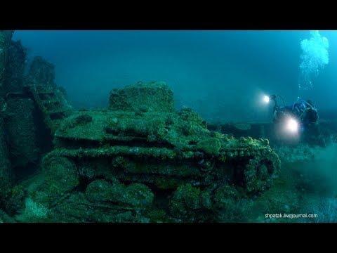 Глубины океана. Подводный мир. Документальный фильм.