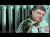 Hack News - О Петрухе позабыл ты