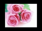 Виктор Лекарь - Эти розы для тебя. Создал видео - Прейтикас Артурас (1)