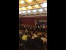 Violoncelles Vibrez Дж Соллима