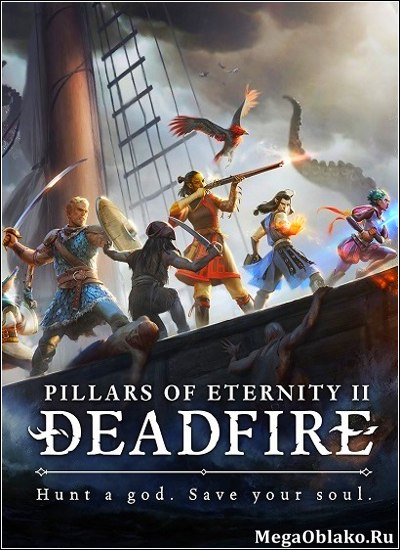 Pillars of Eternity II: Deadfire [v 1.0.2.0089 + DLCs] (2018) PC | RePack от xatab