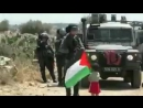 Араб отправляет своего сыночка к израильским военным, вдруг провокация удастся - можно будет кричать об израильской военщине