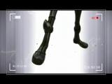 ЛедиБаг и Супер Кот - Whatever It Takes (клип by TG)