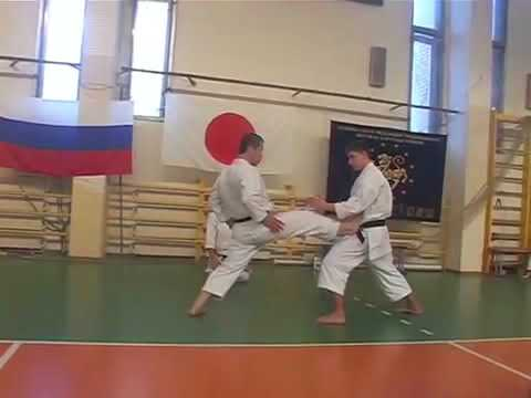 Geri Waza _ Sensei Masao Kagawa karate seminar