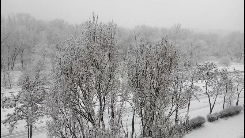 зима из моего окна 20.01.2018г.