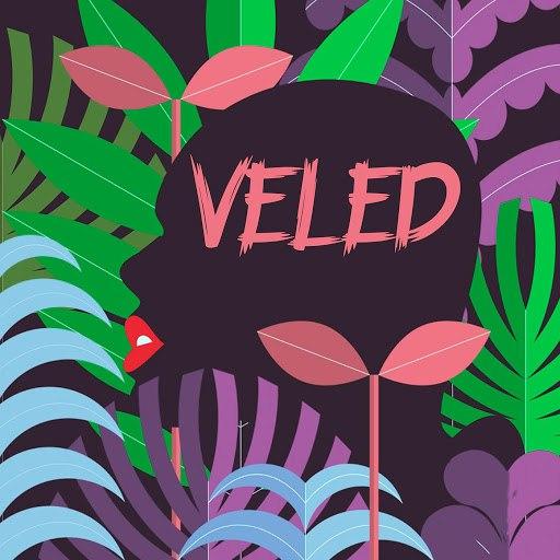 Compact Disco альбом Veled
