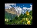 ულამაზესი ოსური საცეკვაო მელოდია - Ulamazesi Osuri Sacekvao Melodia 💕 12