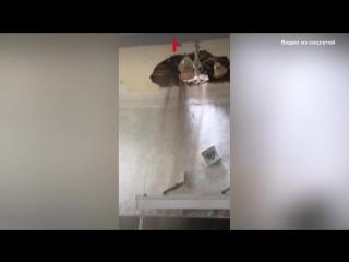 Потолок рухнул во время урока в школе