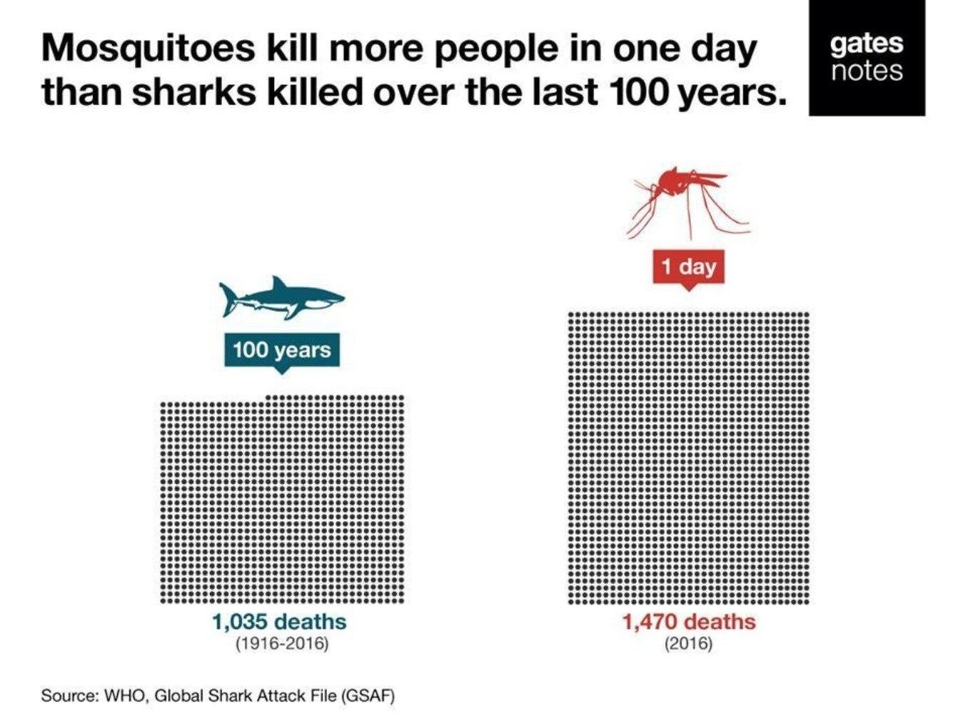 Комары за день убили больше людей, чем акулы за 100 лет.
