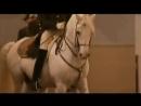 Классическая венская школа верховой езды